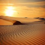 Tunisian Desert Solar Project TuNur to Export Electricity to Europe